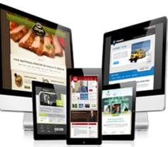 website designing company in Bhilai