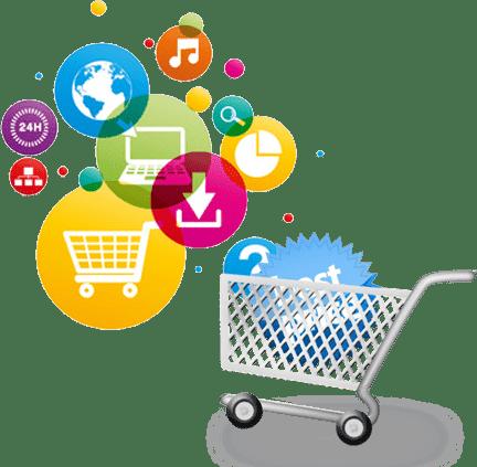 customised ecommerce website designing services in raipur